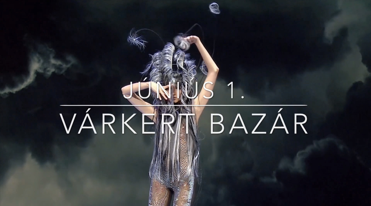 budapest hair show_bwnet