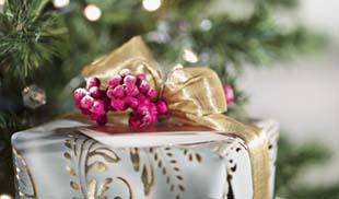 <p>A karácsony és szilveszter minden ember számára nagy készülődéssel jár, legfőképp a hölgyeknél van ez így. Az ajándékozás, az ünnepi ételek, a lakás kicsinosítása mind-mind sok időt és energiát igényel. A tökéletesség azonban akkor érhető el, ha magunkra is kellő figyelmet fordítunk.</p>