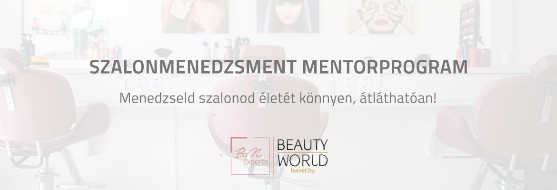 BWnet Mentor Program -